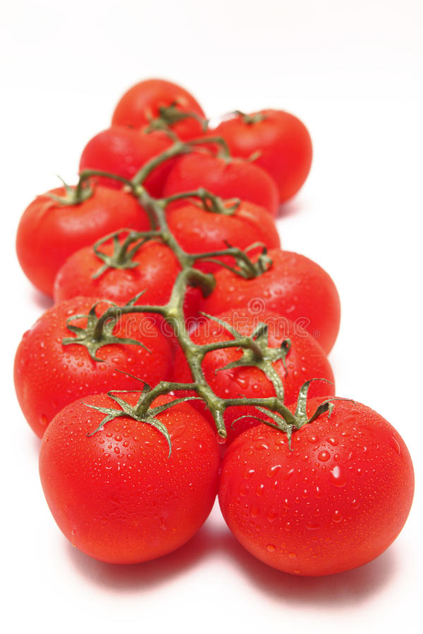 Vine tomato tomatoes red stock photos