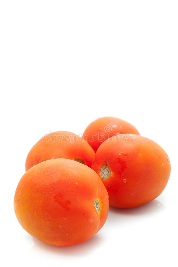Download Tomatoes stock image. Image of diet, orange, bright, health - 22330033