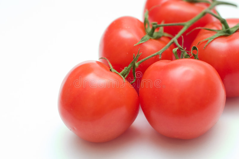 Download Tomatoes Stock Photo - Image: 2301110