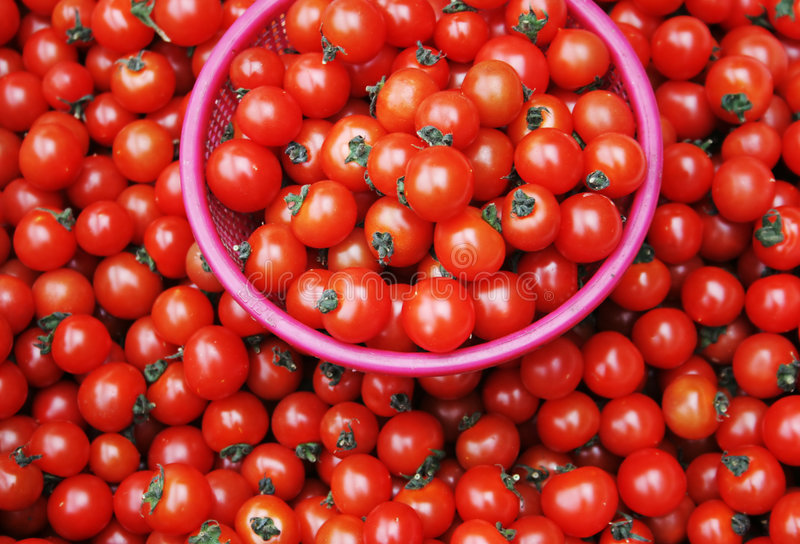 Download Tomatoes Stock Image - Image: 2321451
