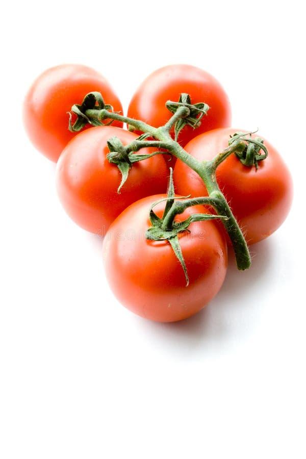 Free Tomatoes Royalty Free Stock Photos - 6278068
