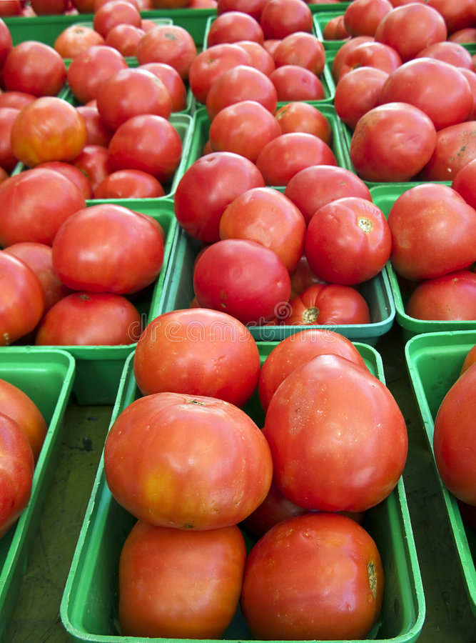 Download Tomatoes stock photo. Image of summer, boxes, natural - 8192806