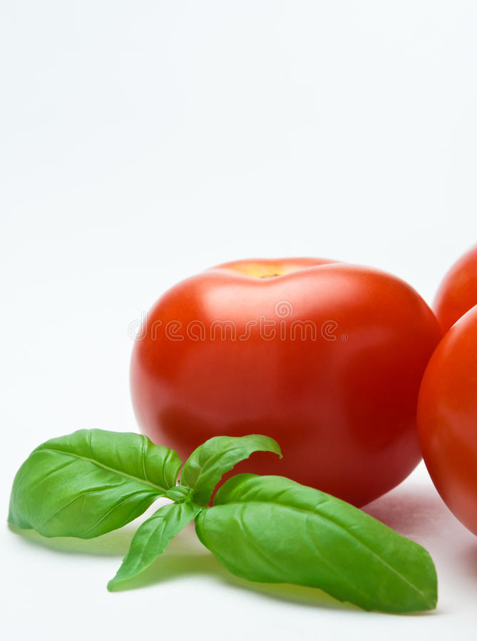 Download Tomatoes And Basil - Vertical Orientation Stock Photo - Image of macro, leaves: 18125742