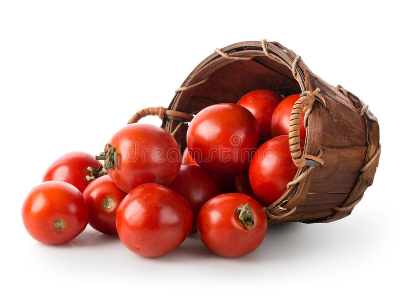 Tomatoes in a basket royalty free stock photography