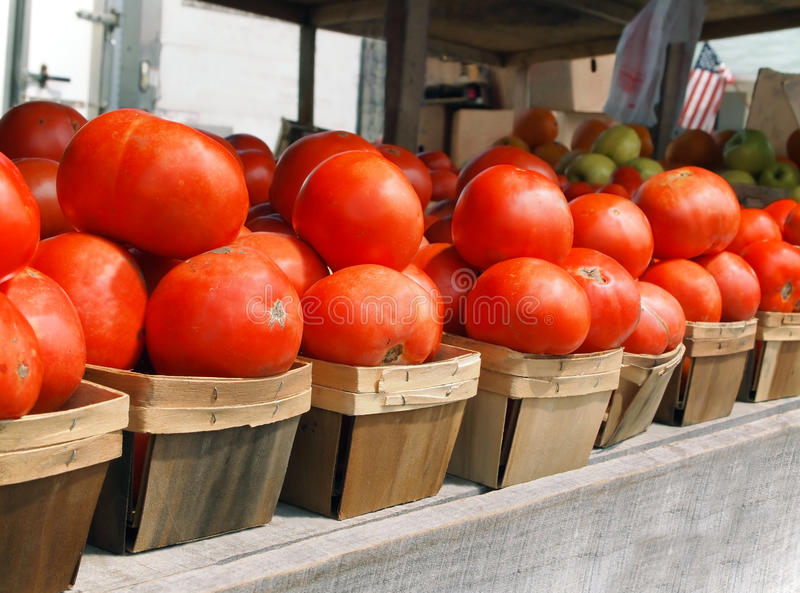 Tomatoes In Baskets stock image