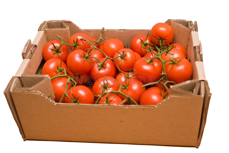 Tomatoes in box stock photos