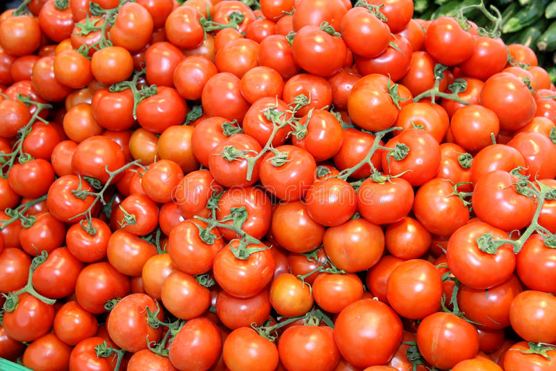 Tomatoes. Bunches of Italian bright red tomatoes stock image