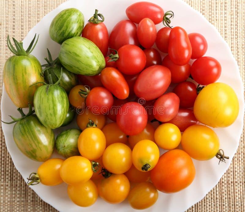 Download Tomatoes. stock photo. Image of orange, tomatoes, tomato - 83717526