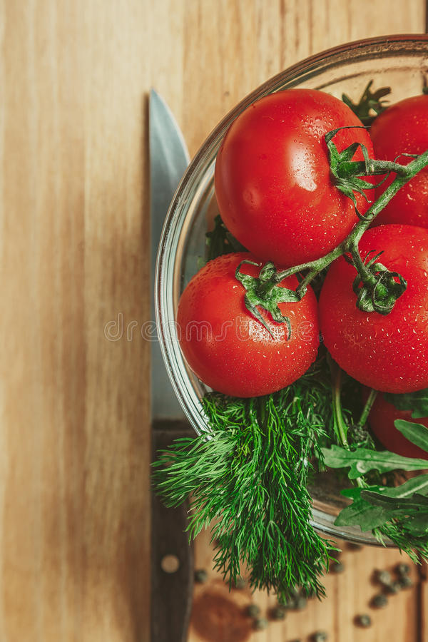 Tomatoes and dill stock image