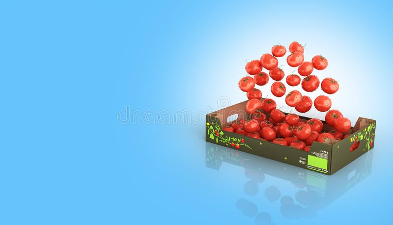 Tomatoes fall into the box isolated on blue gradient background with reflection and place for text 3d royalty free illustration
