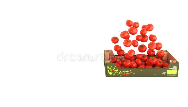 Tomatoes fall into the box isolated on white background without shadow and place for text 3d vector illustration