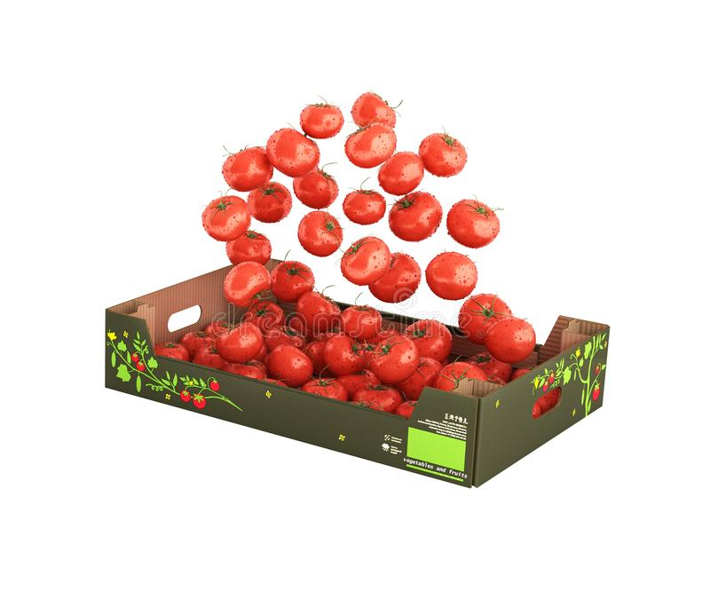 Tomatoes fall into the box without shadow on white background 3d vector illustration