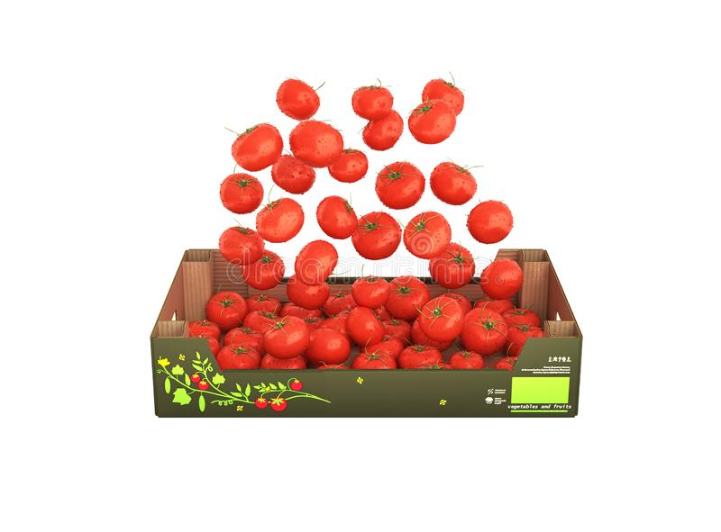 Tomatoes fall into the box without shadow on white background 3d. Tomatoes fall into the box without shadow on white background vector illustration