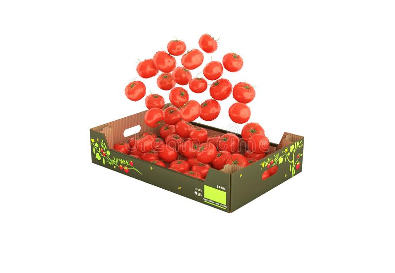 Tomatoes fall into the box without shadow on white background with reflection 3d royalty free illustration