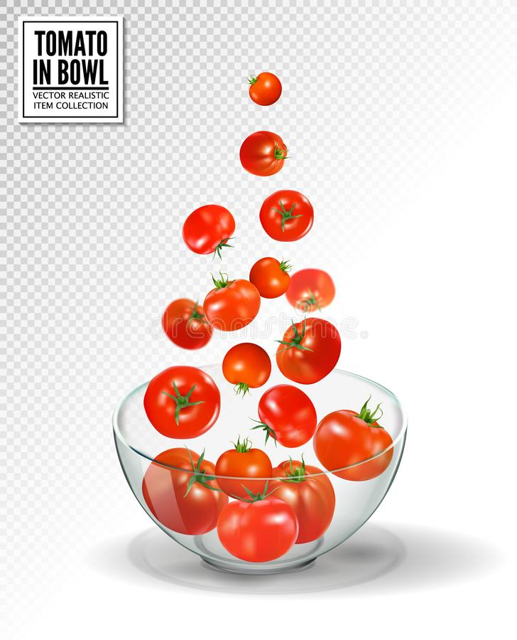 Tomatoes falling into glass bowl. Realistic vector on transparent background. Many red tomato fall. royalty free illustration