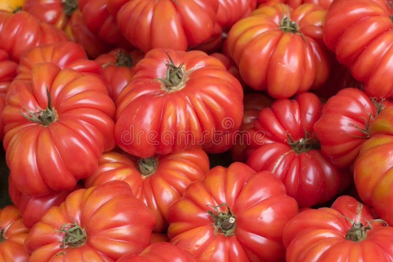 Tomatoes at farmer's market royalty free stock images