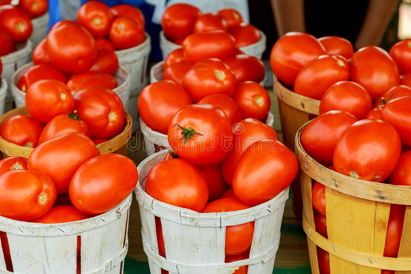 Tomatoes in the Farmer& x27;s Market royalty free stock photography