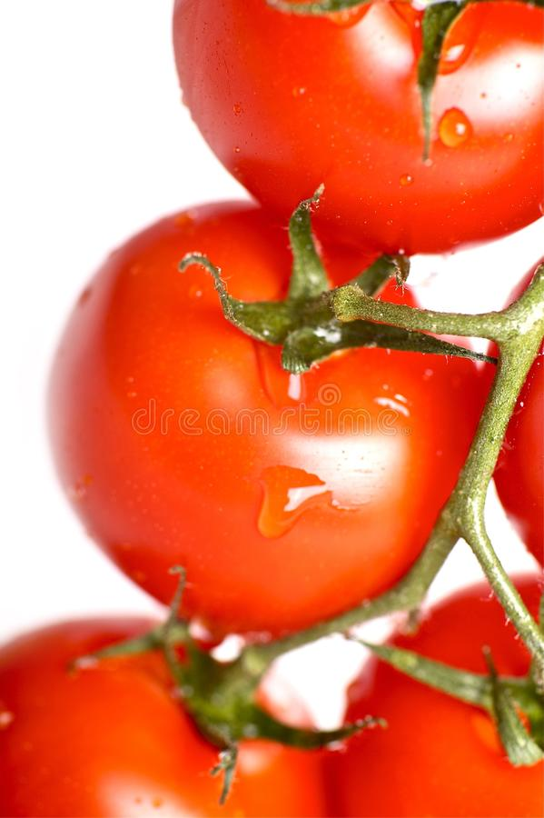 Tomatoes Freshness stock photos