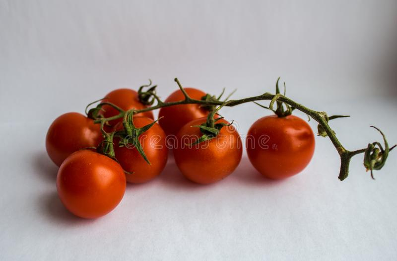 Tomatoes with greens on white background royalty free stock photography