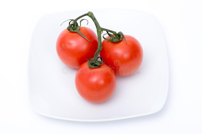 Tomatoes isolated. Three tomatoes isolated on a white dish stock photos