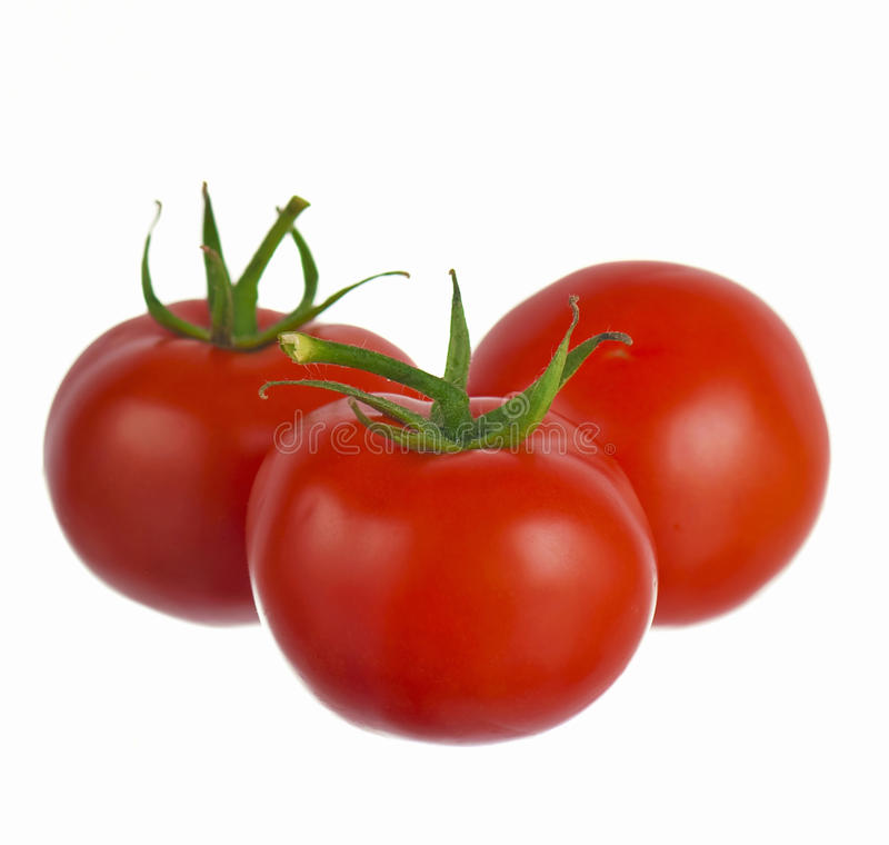 Download Tomatoes isolated on white stock image. Image of white - 24913545