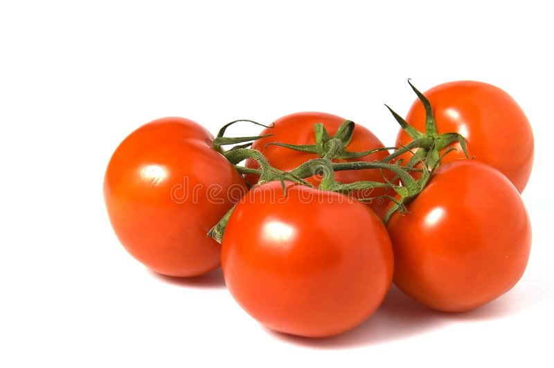 Download Tomatoes Isolated On White Background Stock Photo - Image of consume, background: 1672886