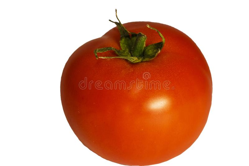 Tomatoes isolated on white background. Two fresh raw vegetables. Full depth of field. royalty free stock photos