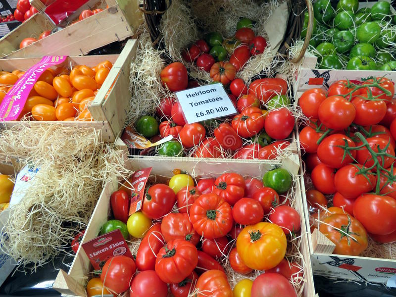 Tomatoes on a market stall royalty free stock photos