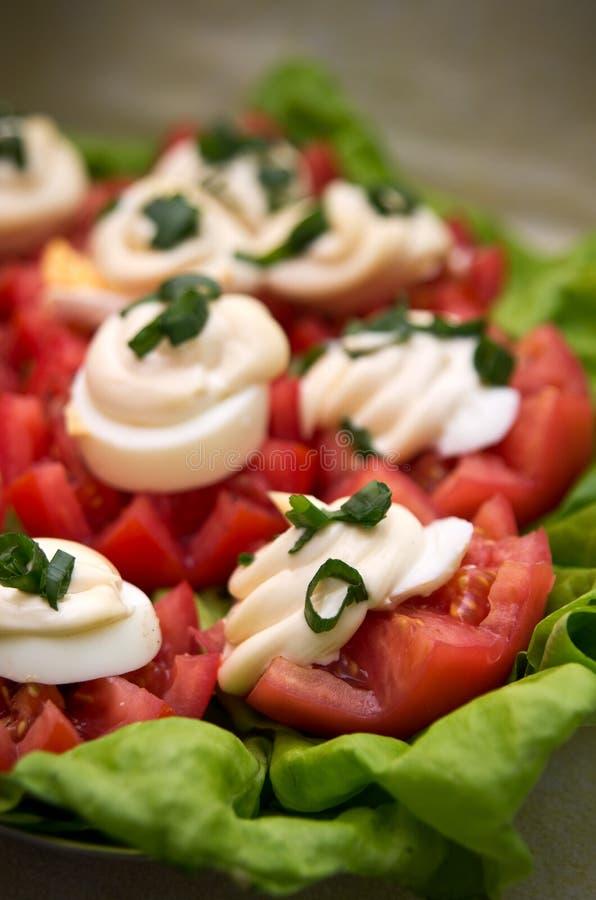 Tomatoes and mayonnaise stock photo