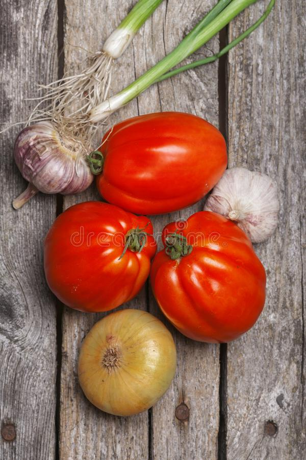 Tomatoes, onion and garlic on the table. Tomatoes, onion and garlic on the vintage wooden table royalty free stock photography