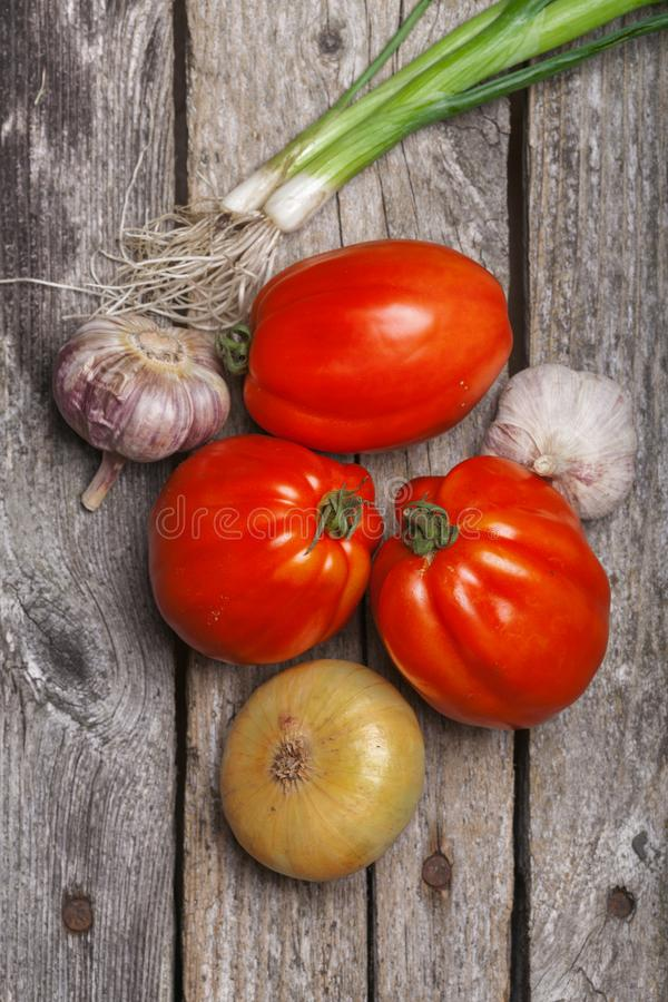 Tomatoes, onion and garlic on the table stock photos