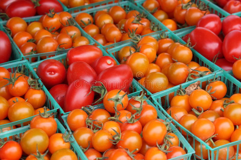 Download Tomatoes, Orange And Red Stock Images - Image: 17430564