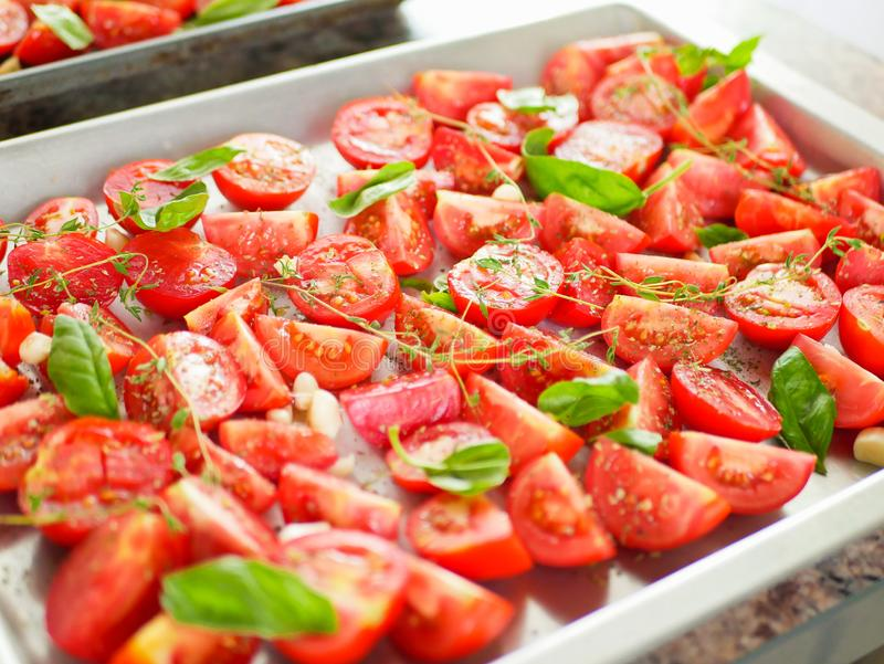 Tomatoes with provencal herbs, basil, thyme, and garlic. Vegetarian ratatouille from eggplants, zucchini, tomatoes and bell pepper. Sauce and tomato with herbs royalty free stock image