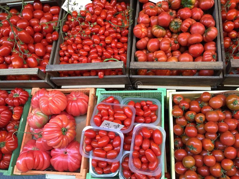 Tomatoes red stock image
