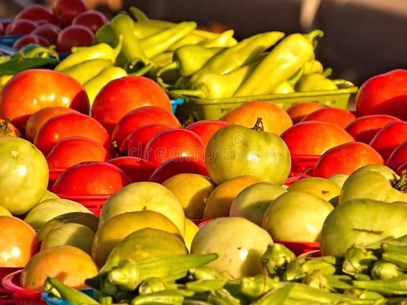Tomatoes for sale at the outdoor farmers market stock photography
