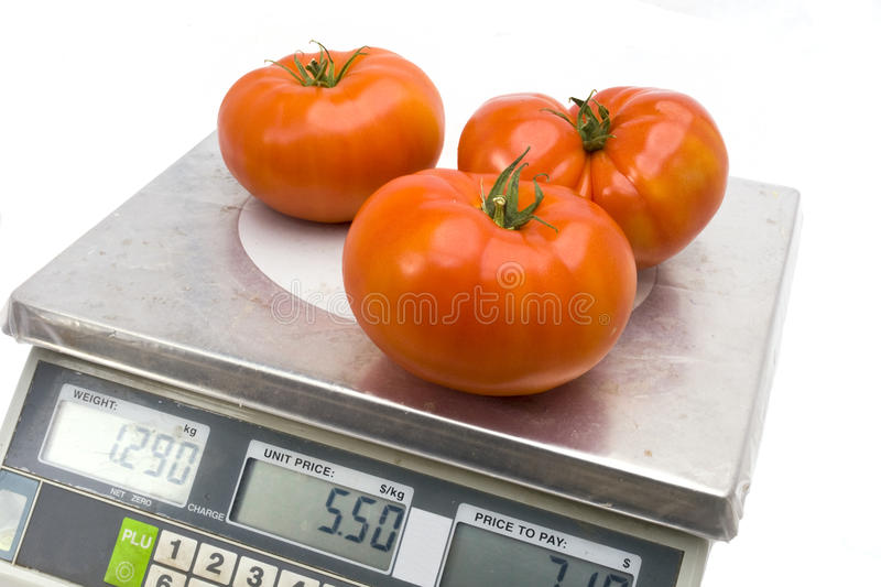 Tomatoes on the scales royalty free stock images