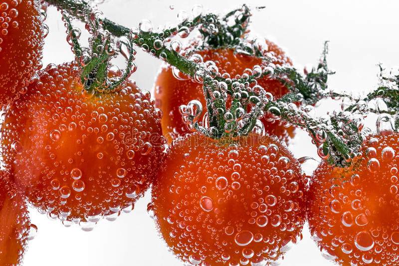 Tomatoes in Sparkling water stock photography