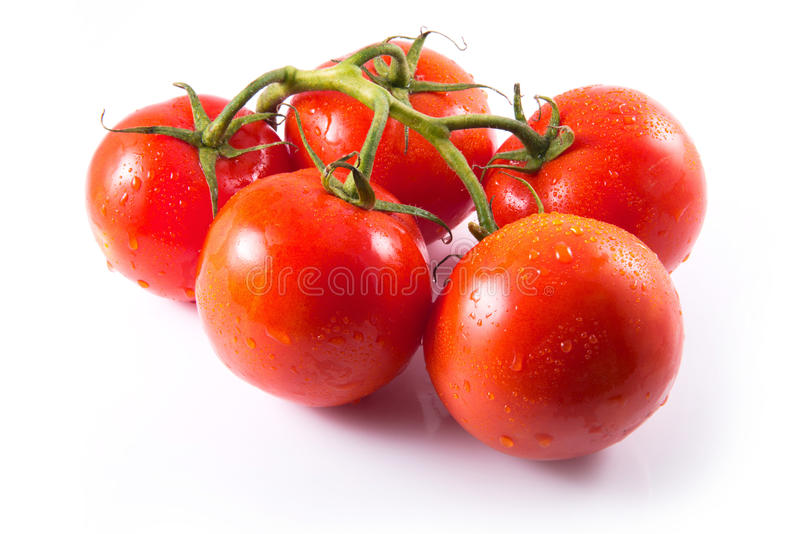 Download Tomatoes with stem stock photo. Image of round, tasty - 25720564