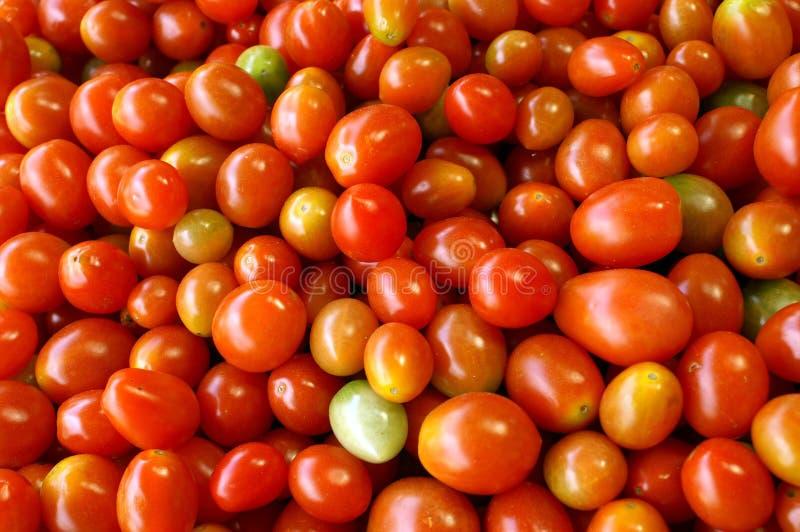 Download Tomatoes texture stock image. Image of texture, orange - 14851905