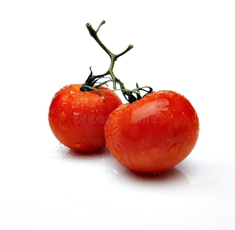 Download Tomatoes stock image. Image of sauce, natural, balls - 34463587