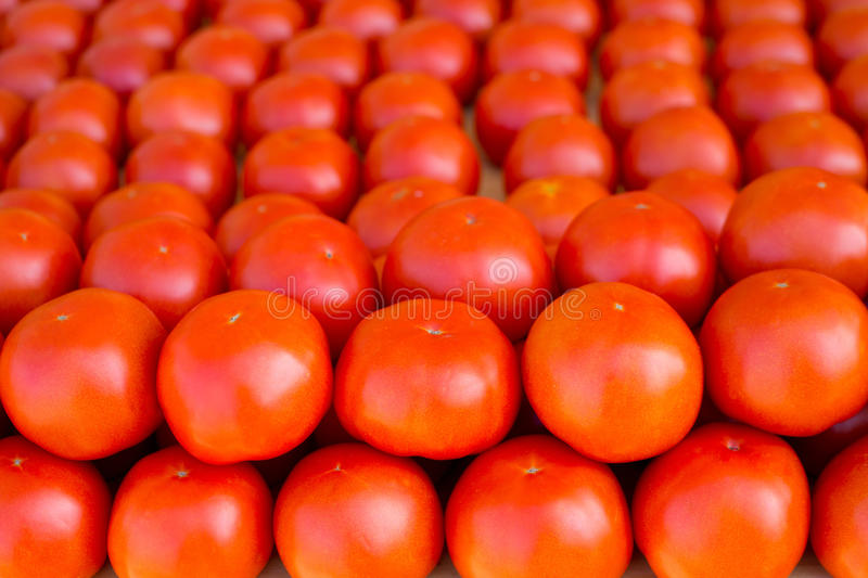 Tomatoes Vegetables Stacked In A Row On Market Royalty Free Stock Photography
