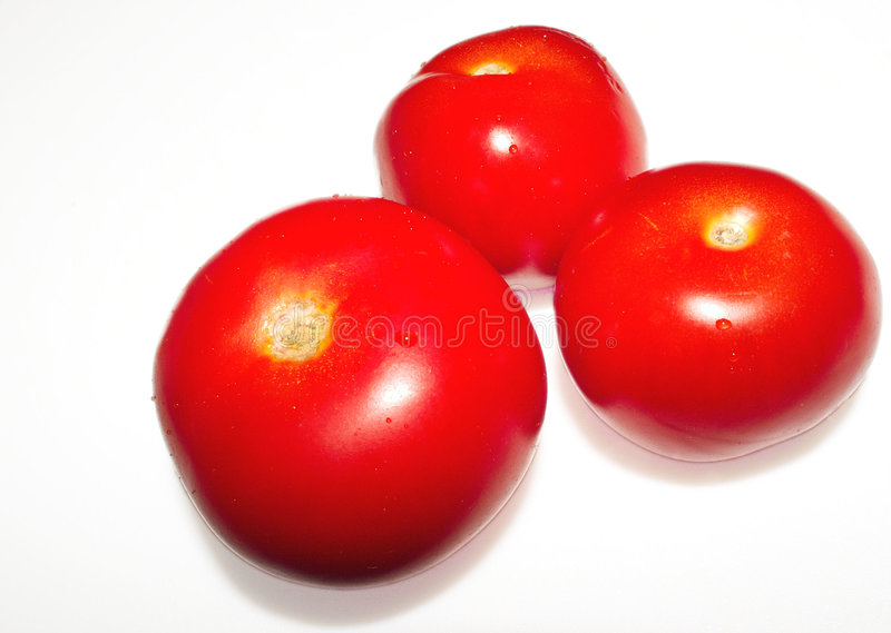 Download Tomatos stock image. Image of nature, vegetable, isolated - 58027