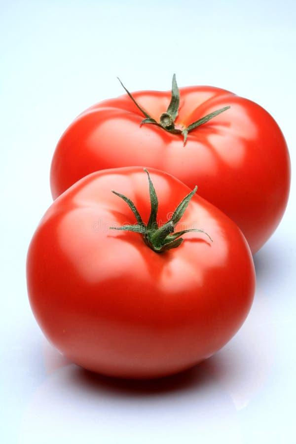 Free Tomatos Royalty Free Stock Photo - 8068285