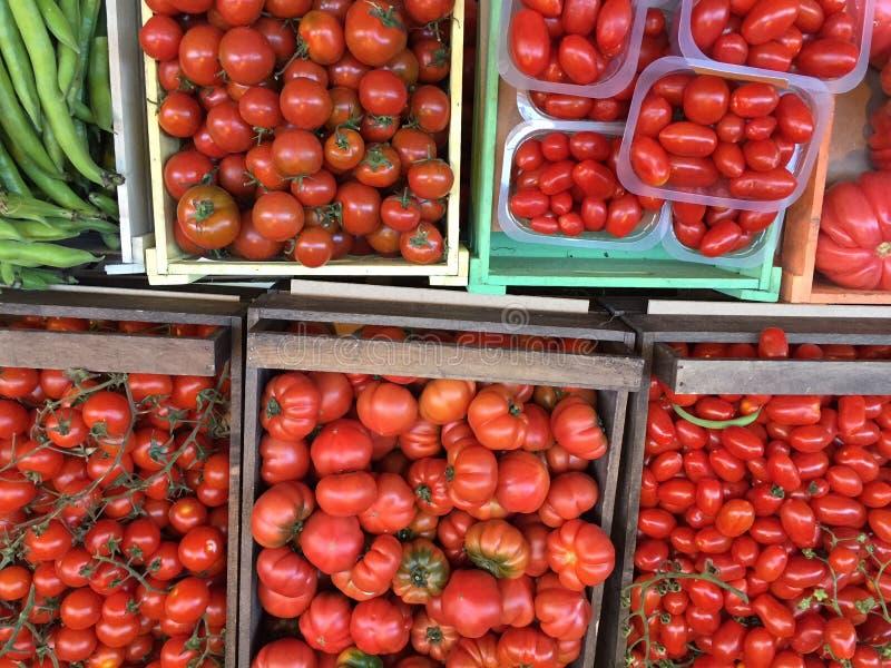 Tomatos of all kinds italy pomodoros stock image