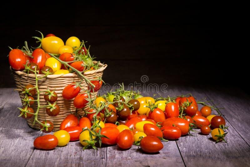 Tomatos on basket royalty free stock photo