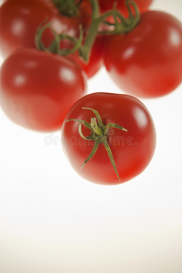 Tomatos one in front of others