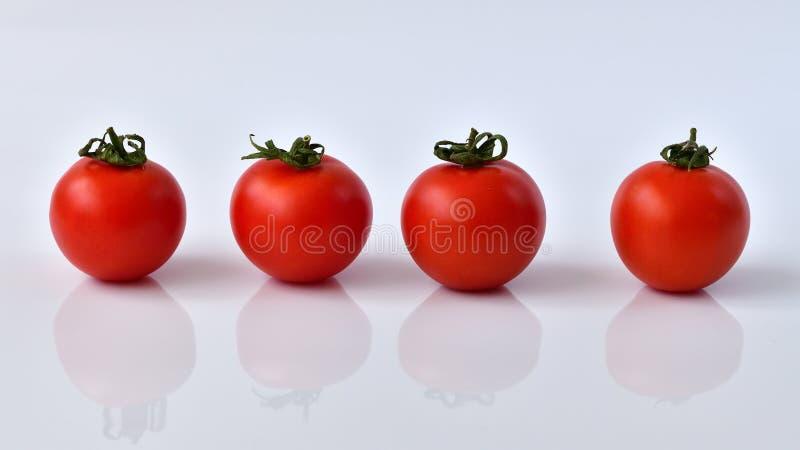Tomatrulle på vit bakgrund arkivfoton