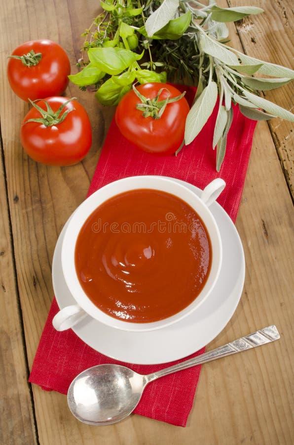 Tomatsoppa i en vit bunke arkivfoton