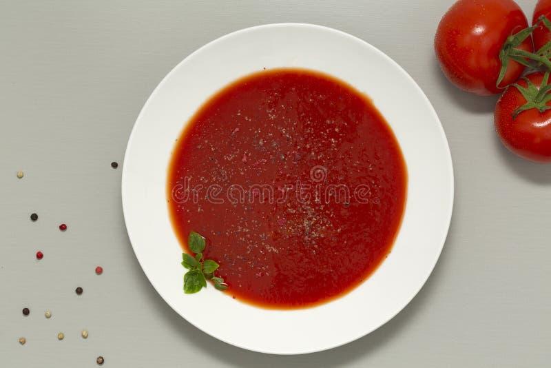 Tomatsoppa i en vit bunke på grå bakgrund Läcker soppa av tomater och nya örter med vitlök och kryddor royaltyfri fotografi