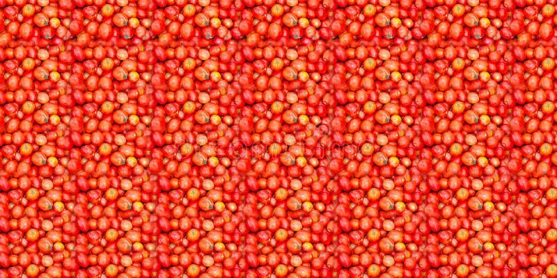Tomattextur royaltyfria bilder